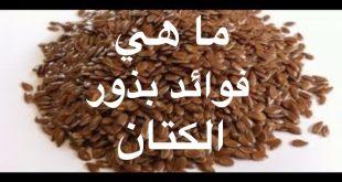 صورة ماهي فوائد بذرة الكتان , حقائق مذهلة عن بذور الكتان