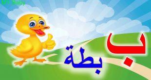 صورة كلمات تبدا بحرف الباء , اكلات وبلاد وحيوانات تبدا بحرف الباء