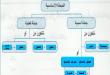 صور الجملة الاسمية والجملة الفعلية , الفرق بين الجملة الاسمية والفعلية