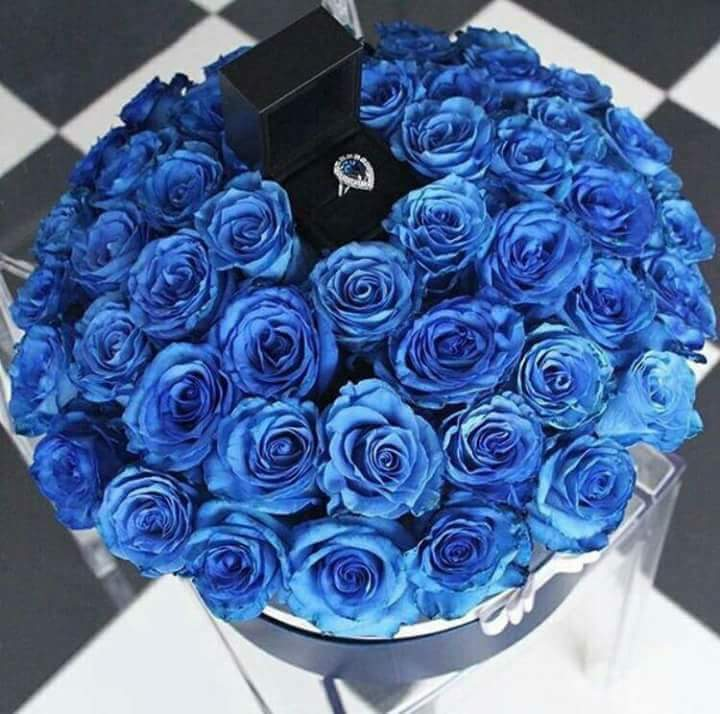 صور بوكيه ورد ازرق لعشاق اللون الازرق اجمل بوكيهات ورد ازرق اغراء القلوب
