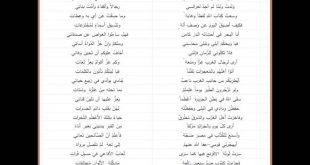 بالصور قصيدة عن اللغة العربية , لغتنا الجميلة لا تكفيكي دوايون شعر