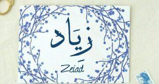 بالصور مامعنى اسم زياد , زياد و معانيه الجميلة في اللغة العربية