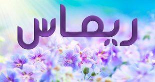بالصور معنى اسم ريماس في اللغة العربية , تعرف على معنى اسم ريماس