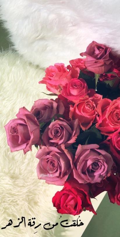 تمبلر ورد طبيعي انواع الورد واهميته اغراء قلوب