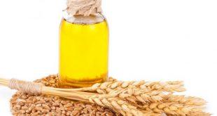 صور فوائد زيت جنين القمح للشعر الابيض , زيت جنين القمح للتخلص من الشعرالابيض