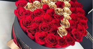صور صور عرض ورد , اجمل انواع الورود والازهار