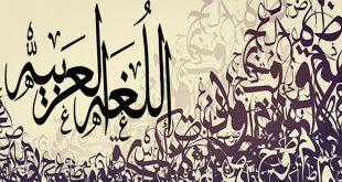 صور من روائع اللغة العربية , غرائب وعجائب لغة الضاد
