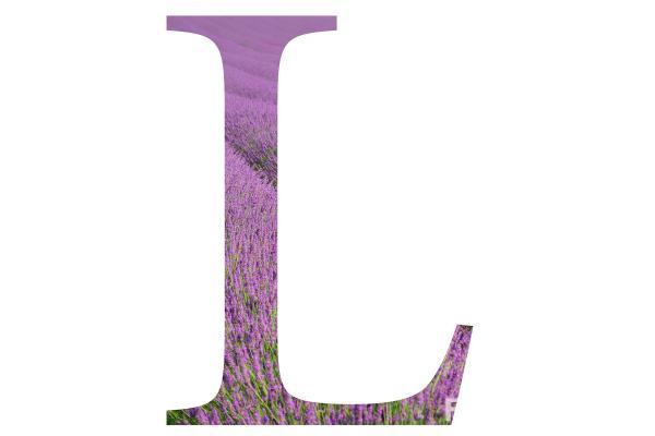 خلفيات حرف L اجمل الصور لحرف ال L اغراء القلوب
