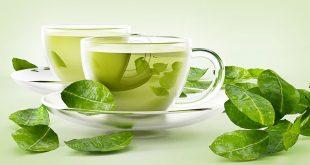 صورة شاي اخضر للتنحيف , استخدام الشاي الاخضر للتخسيس