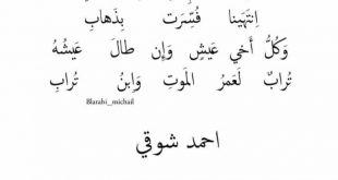 صور شعر احمد شوقي , ملامح عن احمد شوقى