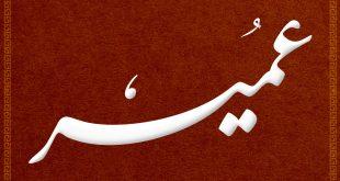 صور معنى اسم عمير , صفات و معنى اسم عمير