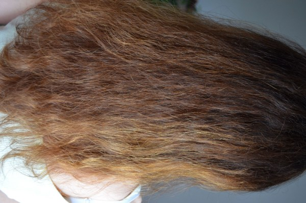 صورة صور الشعر الجاف , كيفية ترطيب الشعر