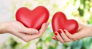 صور قلوب العاشقين , قلوب تنبض الحب