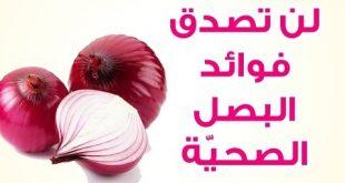 صورة فوائد البصل الاحمر , البصل الاحمر دواء في بيتك