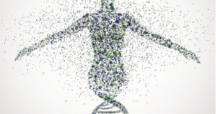 صورة ما هو الجين , بصمتك الوراثية دليل على ذكائك .