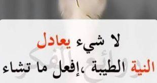 صورة من أمثال العرب , موجودة إلا أنها غير مأخوذة