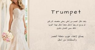 صورة اسماء قصات الفساتين , تطلعى لأجدد القصات وأروع اللمسات