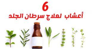 تخلصي من السرطان بمزاج الاعشاب والعسل ،علاج السرطان بالاعشاب والعسل