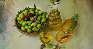 تعرف على انتاج شجر الزيتون في العام الواحد ،كم تنتج شجرة الزيتون