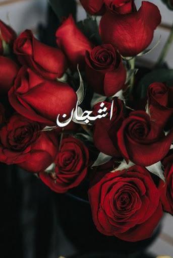 صورة اسماء بنات من 5 حروف 5302 1